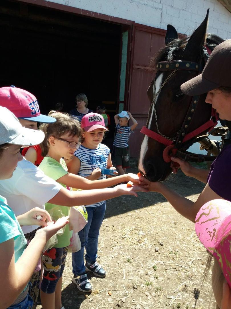 Поездка в конно- спортивную школу